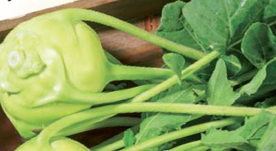 Obst und Gemüse frisch aus Österreich ab 0,59€
